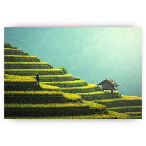 poster landschap