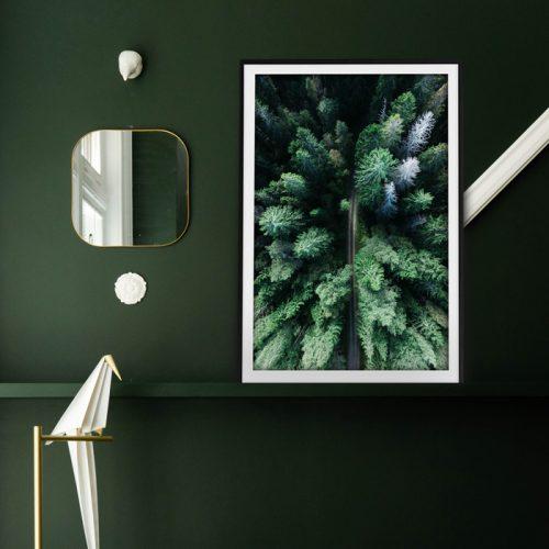 poster bos bovenaf