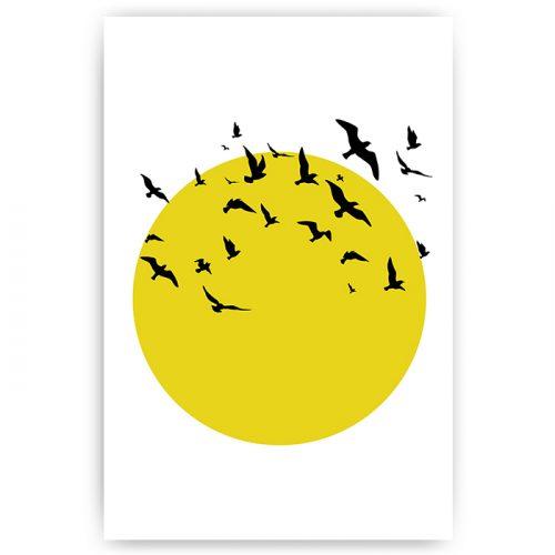 poster illustratie zon vogels