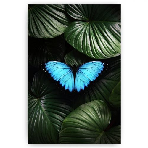 poster vlinder in jungle