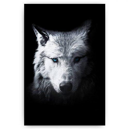 poster wolf portret zwart