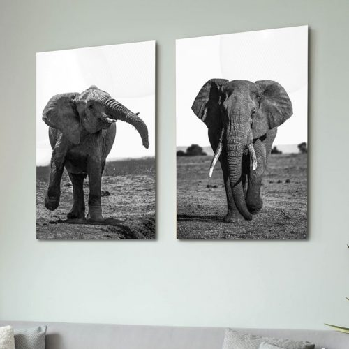 posters olifanten