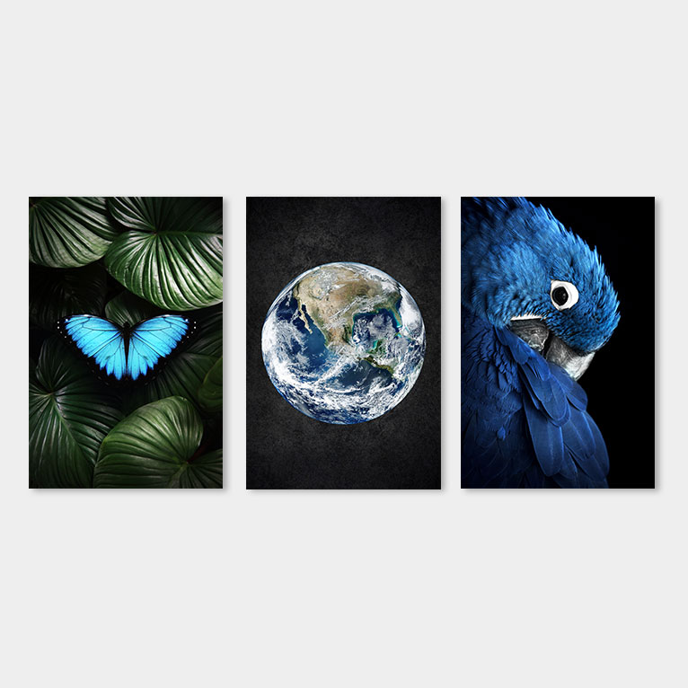 papegaai vlinder aarde