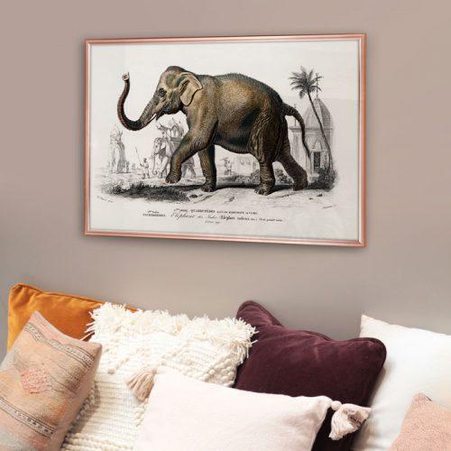 vintage olifant